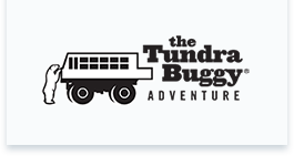 The Tundra Buggy Adventure