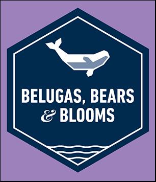 Belugas, Bears and Blooms