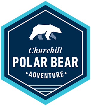 Classic Churchill Polar Bear Adventure by Train