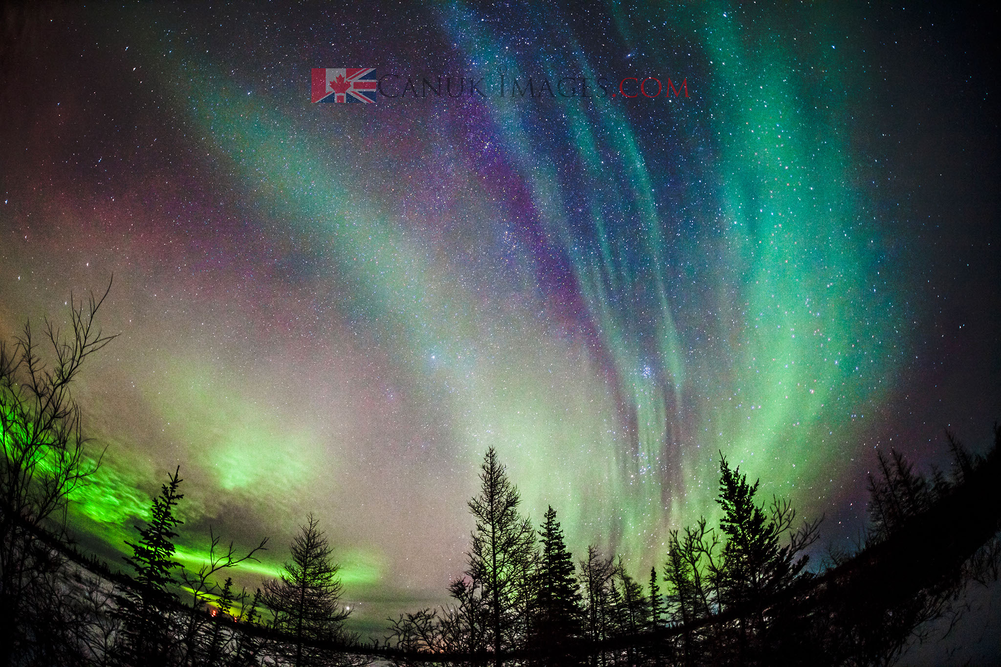 Northern Light Photography | Frontiers North Adventures